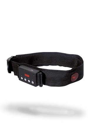 irHeadband-300×450